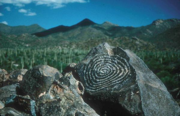 Petroglyphs at Saguaro National Park.