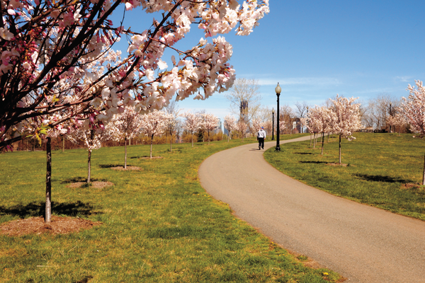 Cherry Tree Lane near the Nature Interpretive Center in Liberty State Park, New York City.