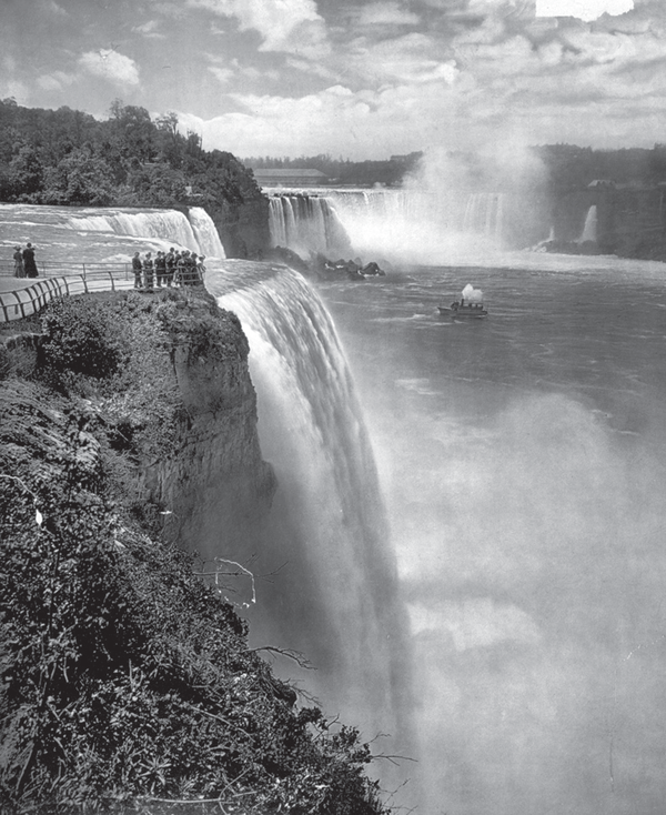 A view of Niagara Falls.