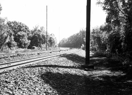 Duffy's Cut looking east. Reprinted from Massacre at Duffy's Cut: Tragedy & Conspiracy on the Pennsylvania Railroad by William E. Watson and J. Francis Watson, courtesy of the Watson collection (pg. 43, The History Press, 2018).