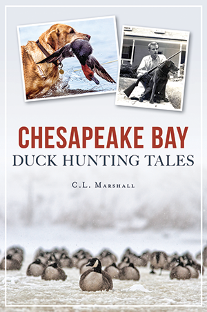 Chesapeake Bay Duck Hunting Tales