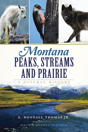 Montana Peaks, Streams and Prairie