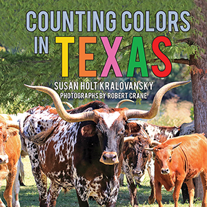 Counting Colors in Texas