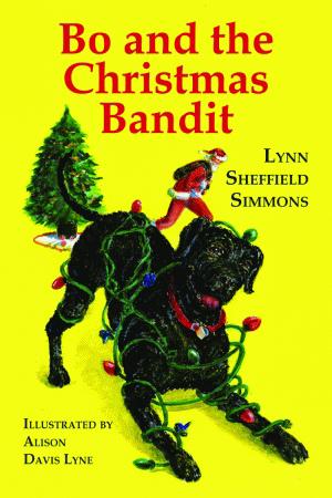 Bo and the Christmas Bandit