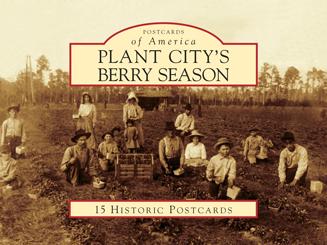 Plant City's Berry Season