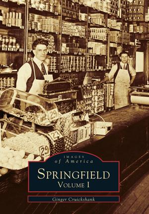 Springfield: Volume I