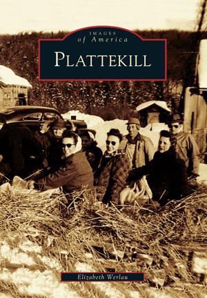 Plattekill