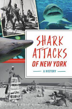 Shark Attacks of New York: A History