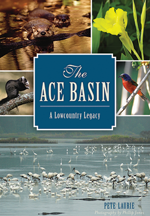 The ACE Basin