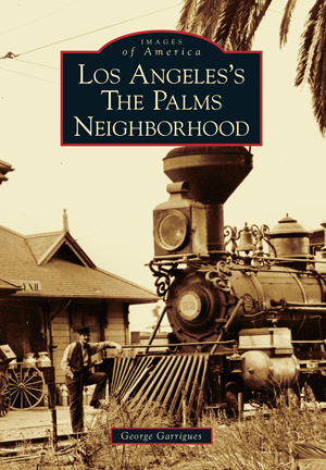 Los Angeles's The Palms Neighborhood