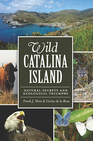 Wild Catalina Island: Natural Secrets and Ecological Triumphs