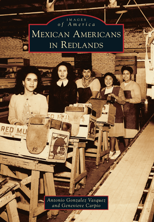the contribution of the american immigrants to the american culture and history This curriculum was designed to supplement content standards in social studies and world history as it relates to the study of american history.