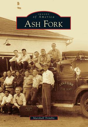 Ash Fork